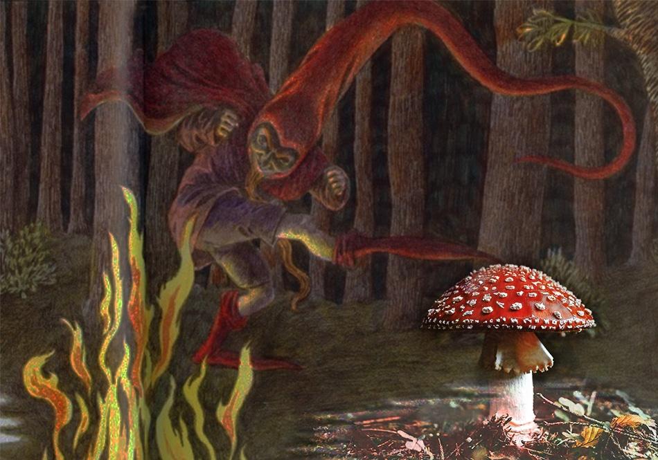 Homöopathischer Märchenabend: Agaricus